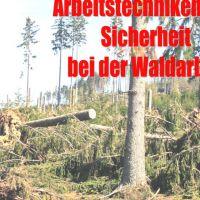 """Windbruch """"Gefahren im Einsatz"""""""