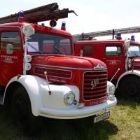 Hallenfest 2019 - Sonntag Frühschoppen